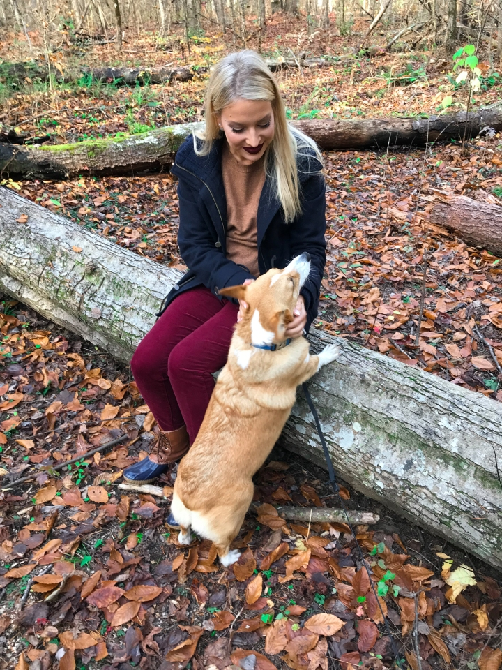 DOG-FRIENDLY TRAILS IN THE SMOKIES